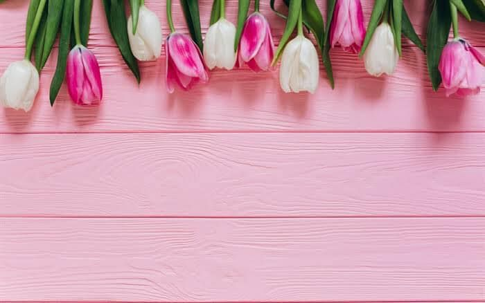 Pink Wood Flower Phone Wallpaper Floral Background Pink Tulips