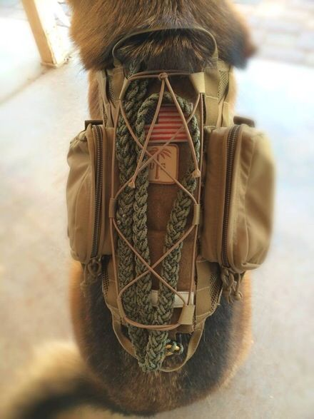 Sneak Peek – US PALM K9 Gear