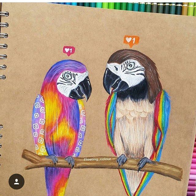 Instagram parrots. Double tap the one you like. By: @floating_colour. #parrot #animal #instagram #instalogo #colour #oldlogo #newlogo #instagramlogo #art #artwork #artist #unreal #realism #realisticart #realistic #realiticartwork #unbelievable #pen #pencil #black #white #paper #awesome #amazing #sick #epic #detail #artoftheday #bestart #instaart by best._.art http://www.australiaunwrapped.com/