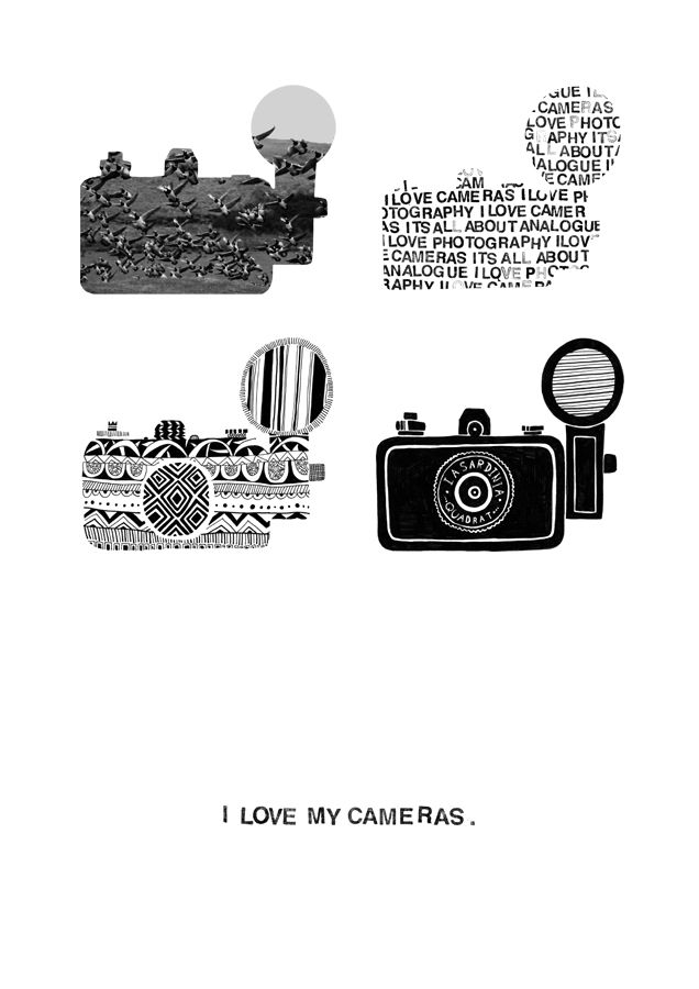 I love my cameras greeting card or wall print