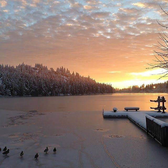 Long Lake Sunrise - Nanaimo  #Long Lake Sunshine #MLI #ESL #LearnEnglish #Canada #BC #Homestay #StudyinCanada