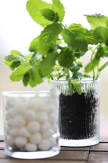 PartyLite Natur'es Light Jar Candles make beautiful holders for all sorts of things when you're finished with them! We've planted mint in ours and teamed it with a regular Escential Jar Candle filled with mint sweets to really set off the texture!