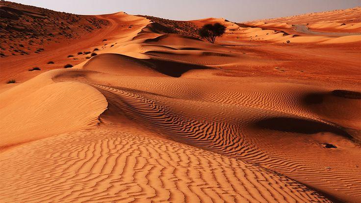 DUNE WAHIBA Nel territorio dell'Oman è possibile ammirare il deserto di Wahiba, che si estende su un'area di 12500 metri quadri di dune sabbiose spazzate dal vento.