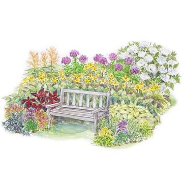 Colorful Garden Plan for Partial Shade