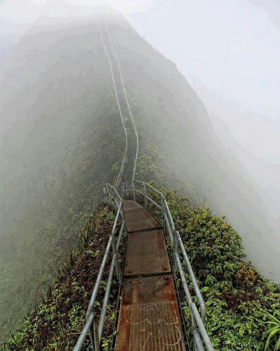 27 best images about stairway to heaven on Pinterest