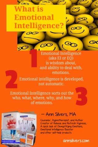 """What is emotional intelligence? 3 definitions of emotional intelligence. Learn more about emotions and how to increase emotional intelligence in my mini book  """"A quick look at Demystifying Emotions"""""""