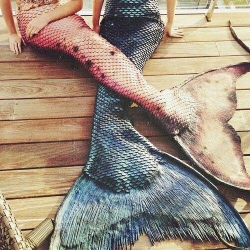 Swimmable mermaid tails. So want!