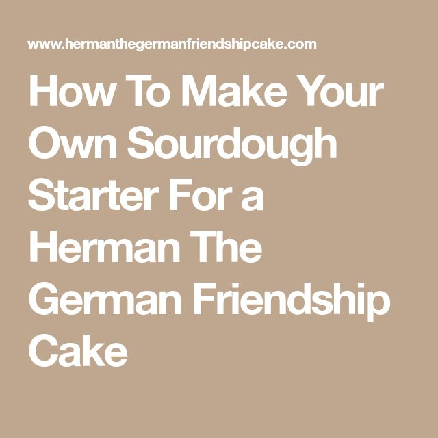 How To Make Your Own Sourdough Starter For a Herman The German Friendship Cake
