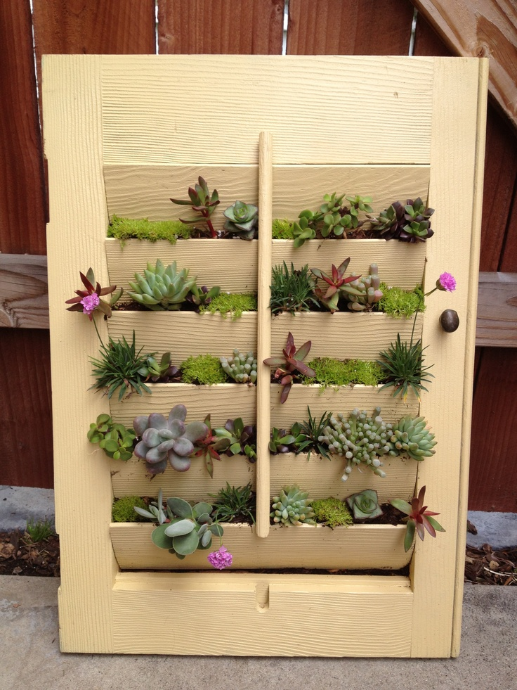 No Space for a Garden? 8 Ways to Grow Plants in Even the Tiniest Places