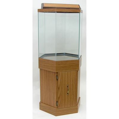 25 best ideas about hexagon fish tank on pinterest fish for Octagon fish tank with stand