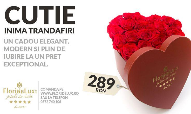 Nu uita sa oferi flori! Promotiile saptamanii la cea mai buna florarie online sunt aici! https://www.floridelux.ro/ *Saptamana aceasta sarbatorim 1 iunie, Ziua Copilului si 4 iunie, Rusaliile! *