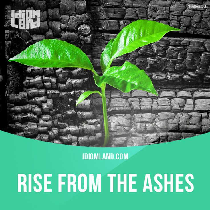 """""""Rise from the ashes"""" means """"to recover after a serious failure"""". Example: A few months after the earthquake large sections of the city had risen from the ashes."""