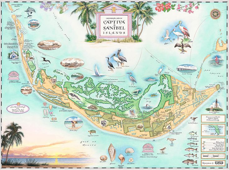 Sanibel Island Attractions Map: 212 Best Images About Sanibel Island On Pinterest