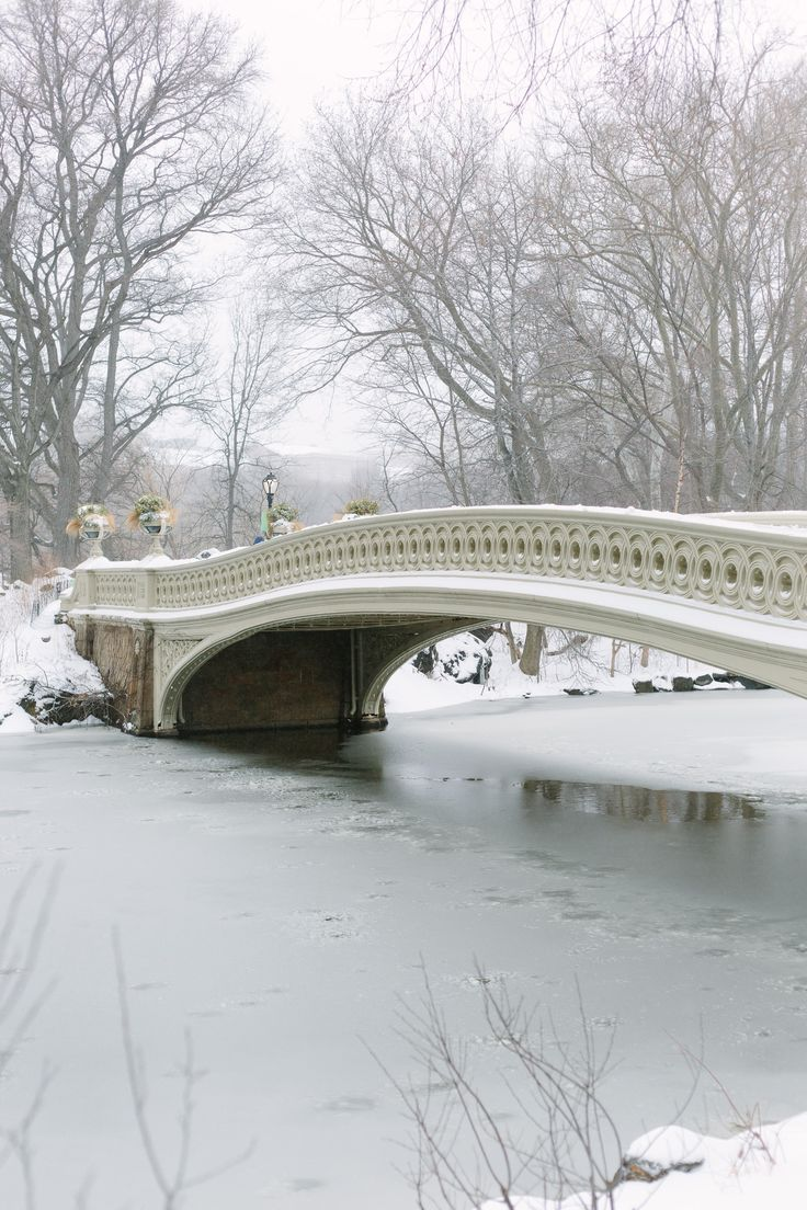 17 best images about new york city new york photo essays snowfall in central park