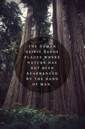 The human spirit needs places where nature has not been rearranged by the hand of man!