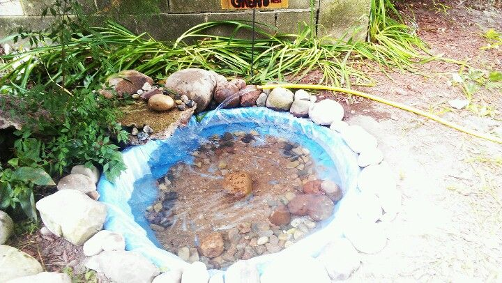 Easy diy pond all you need is an old kiddie pool any for Plastic garden fish ponds