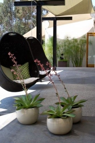 Grounded - Modern Landscape Architecture modern patio