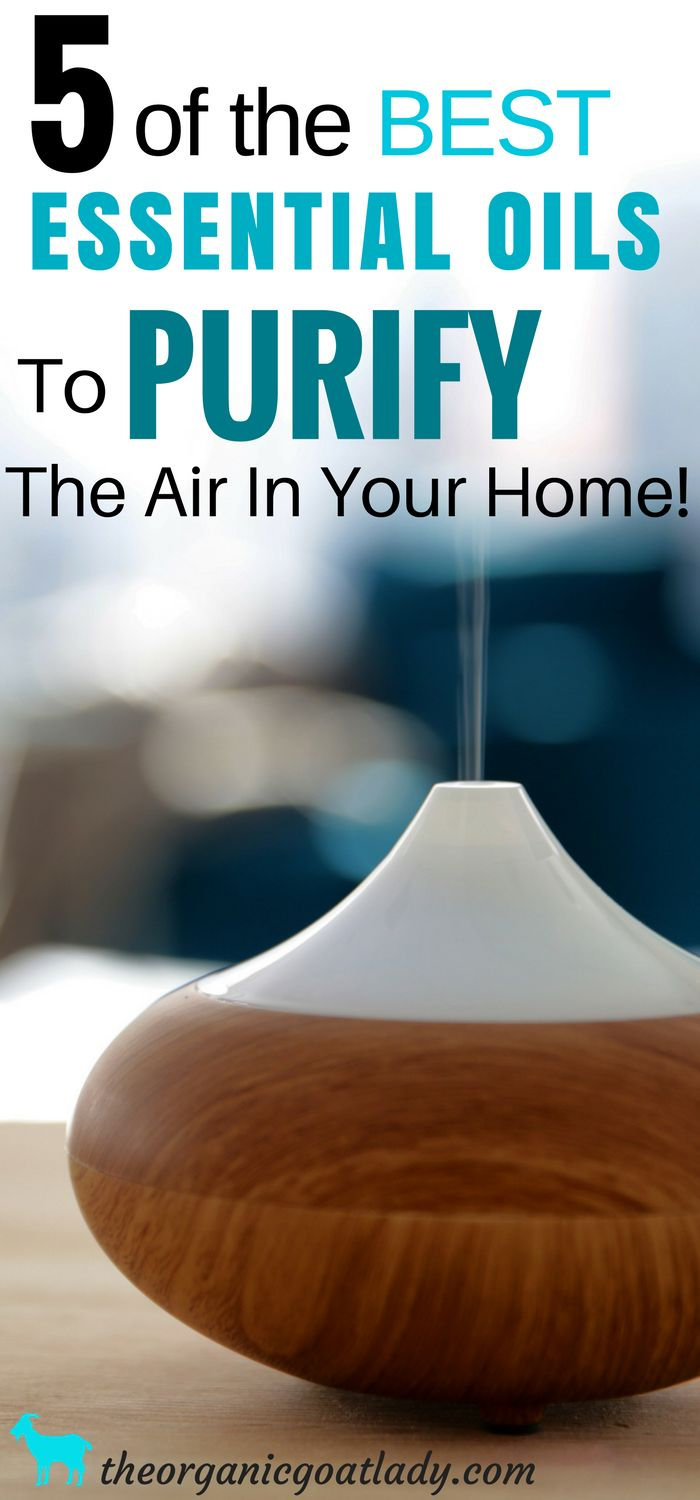 The Best Essential Oils To Purify The Air In Your Home, Aromatherapy Recipes, Essential Oil Cleaner Ideas, Essential Oil Diffuser Blends,