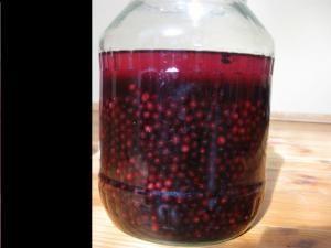 Nalewka z owoców czarnego bzu