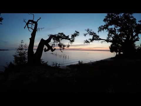 Boondocking at Bayside Campground, Escribano Point WMA, Florida - Exploring the Local Life
