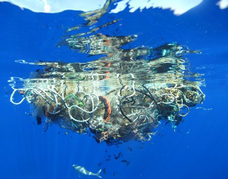 the great Pacific Ocean garbage patch is twice the size of Texas