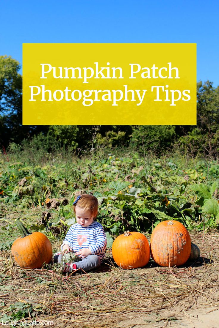 Pumpkin Patch Photography! 6 tips for the best pumpkin patch photos of your kids this Halloween!
