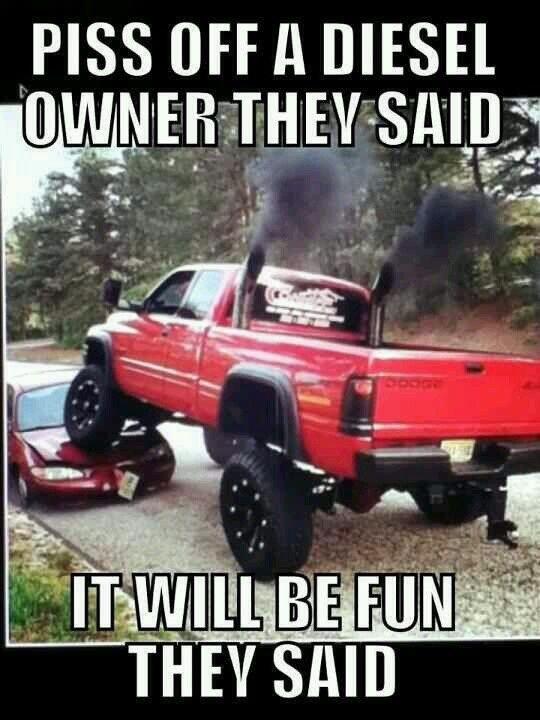 Rednecks insurence