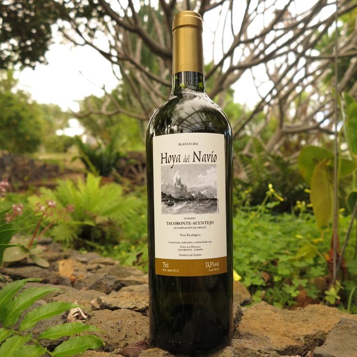 Hoya del Navío Blanco 2012 (D.O. Tacoronte-Acentejo) #VinosdeTenerife