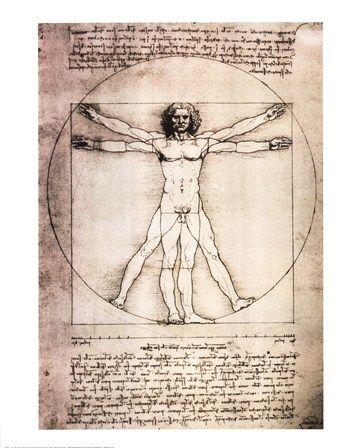 Vitruvian Man, 1492 by Leonardo Da Vinci art print #shopforart
