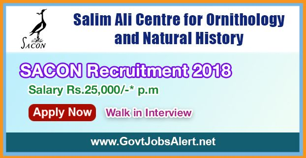 SACON Recruitment 2018 – Walk in Interview for Programme Fellow, Junior Research Biologist and Computer/Lab Technician Posts, Salary Rs.25,000/- : Apply Now !!!  The Salim Ali Centre for Ornithology and Natural History - SACON Recruitment 2018 has released an official employment notification inviting interested and eligible candidates to apply for the positions of Programme Fellow, Junior Research Biologist and Computer/Lab Technician.   #2018 #Computer #featured #gover