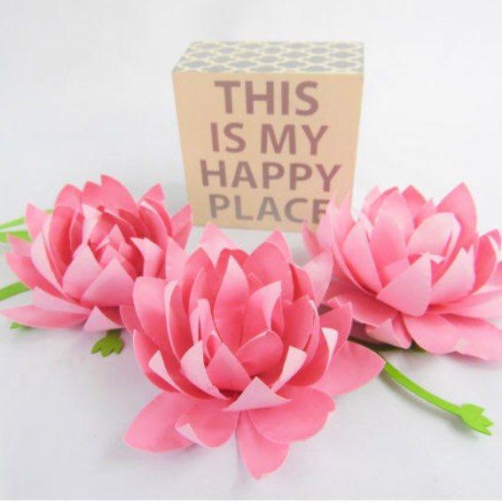 Essay on lotus flower in sanskrit