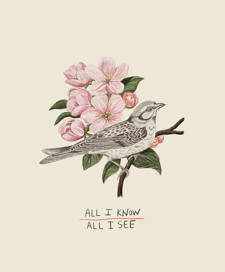 """Wes Lang """"All I Know, All I See"""""""