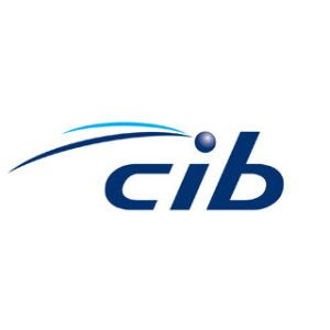 CIB Car Insurance offers Insurance cover for your own accidental damage, theft and hijacking as well as injury to other people or damage to their property.