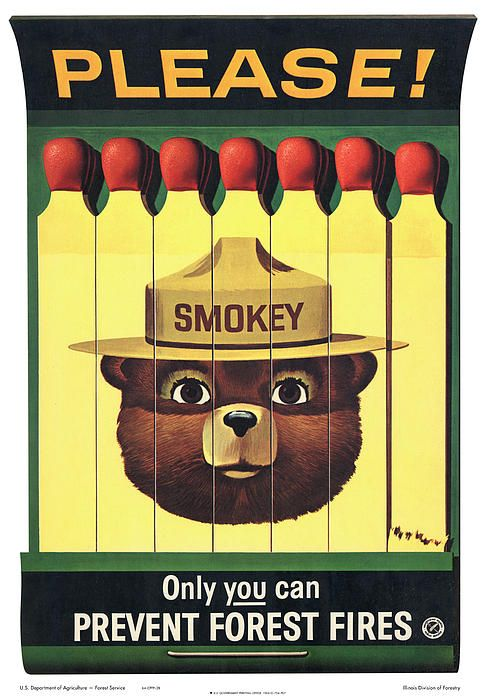 "Remember the song? ""Smokey the bear, smokey the bear.Growling and a-prowling and a-sniffing the air..."