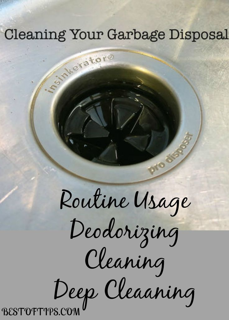 deep clean your garbage disposal cleaning clean garbage disposal and housekeeping. Black Bedroom Furniture Sets. Home Design Ideas