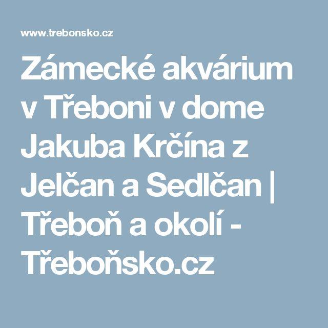 Zámecké akvárium v Třeboni v dome Jakuba Krčína z Jelčan a Sedlčan | Třeboň a okolí - Třeboňsko.cz