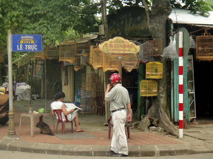 Street corner with old shop and birdcages #Hue #Vietnam