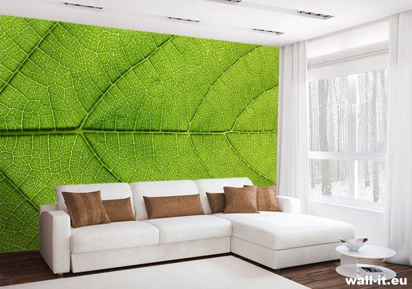 Zielona fototapeta z liściem do pokoju. http://www.wall-it.eu/product/photowallpapers/natura/fototapeta-liscie.jpg #fototapety #mural #murals #wallit #wallmural