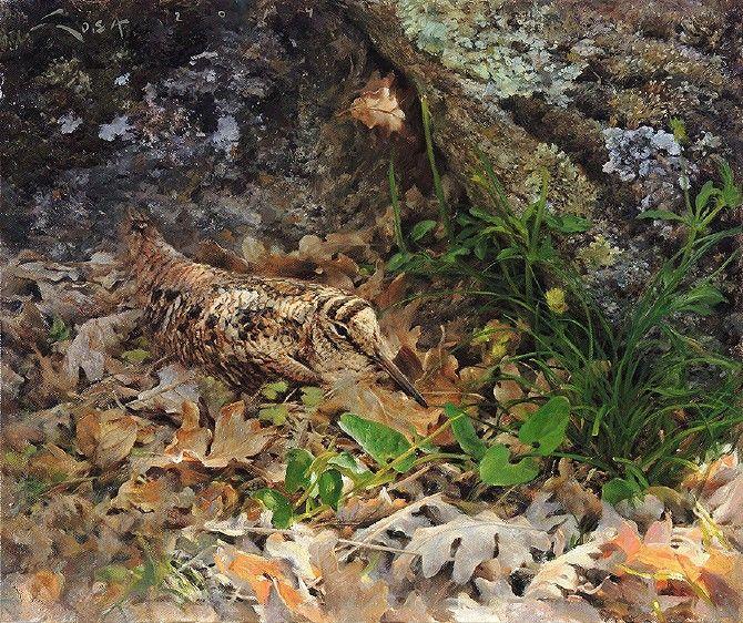 Becada entre hojarasca Chocha Perdiz (Scolopax rusticola) Oleo sobre lienzo. 46 x 38 cms. Cuadro al óleo de una Becada camuflada entre la hojarasca, al socaire de una roca. #becada #chocha #sosa