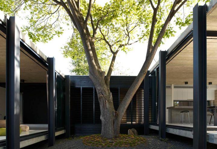 Due piante secolari, presenti sul retro dell'antica villetta edoardiana di Melbourne, hanno determinato la scelta di una struttura sospesa da terra, così da non interrompere la crescita delle radici nel terreno