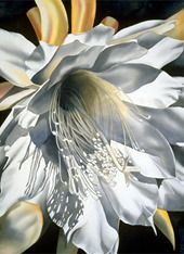 Pintura original de la acuarela floral a la Venta de la acuarela del artista | Birgit O'Connor
