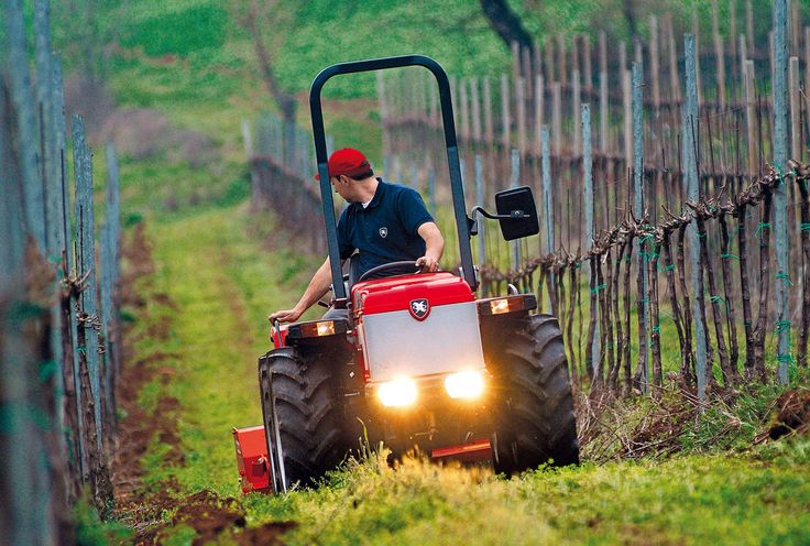 tigrone_5800_családi_gazdaság_traktor_ültetvény