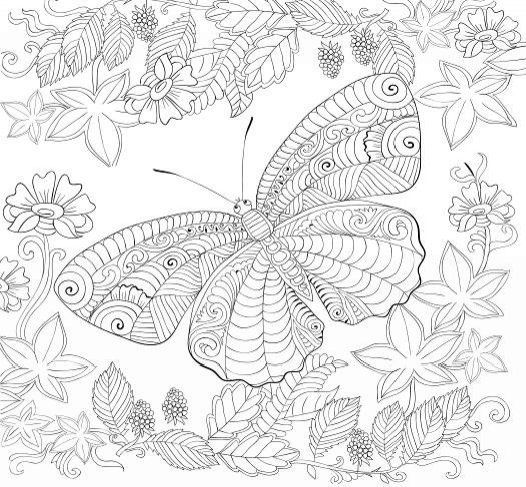 Butterfly Garden Beautiful Butterflies And Flowers Patterns For Relaxation Fun Stress Relief Adult ColoringColoring BooksColouringBeautiful