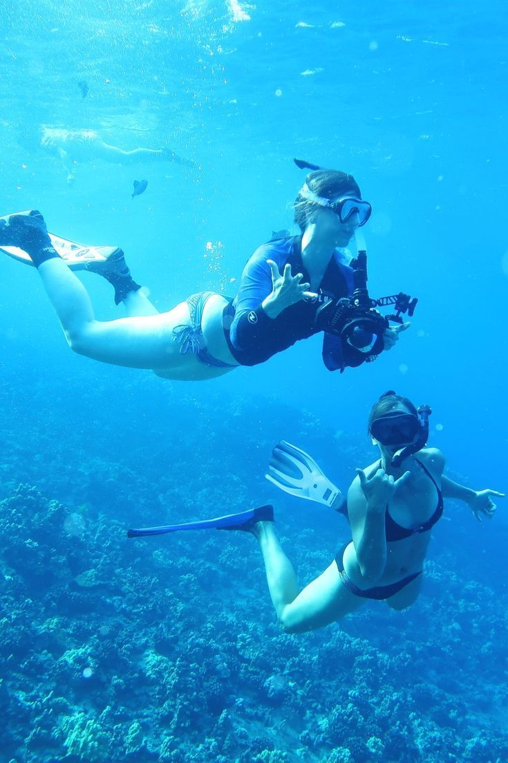 4535 best for the love of scuba diving images on pinterest snorkelling in molokini crater in maui in hawaii snorkel or scuba dive molokini crater maui hawaii usa should you snorkel or scuba dive molokini crater xflitez Choice Image