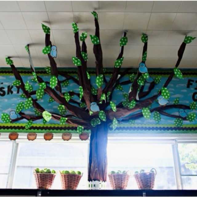 Classroom Decor Tree ~ Best preschool tree study images on pinterest day