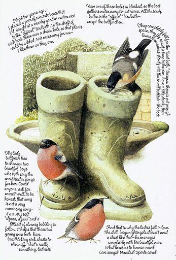"Marjolein Bastin - bullfinch in the garden ""boot-bath"""