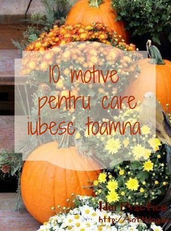 10 motive pentru care iubesc toamna