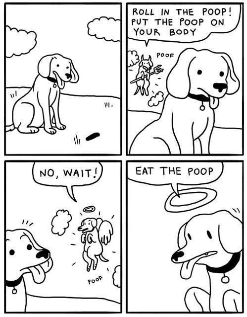 The dilemma in being a dog