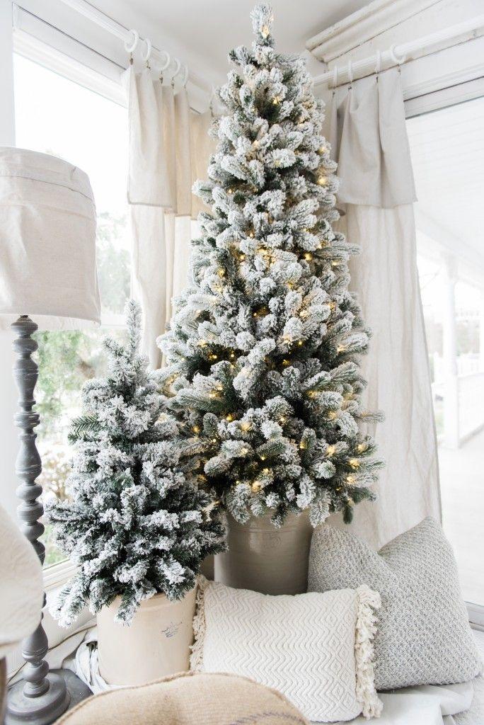 Very Slim Christmas Trees