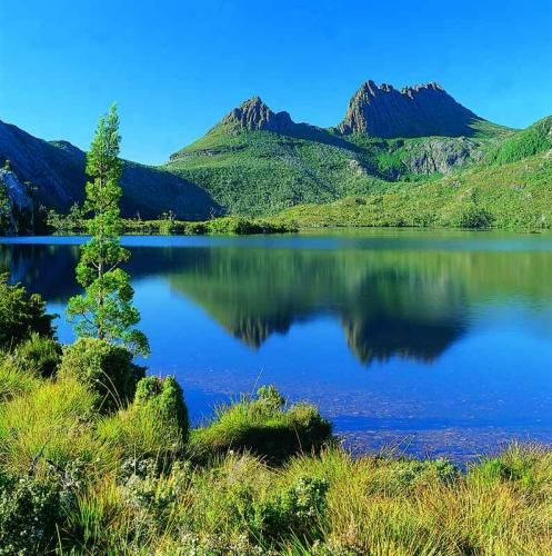 Gorgeous Aussie wilderness - a crystal clear volcanic lake, ancient rainforests and alpine heathlands. Lake St. Clair and Cradle Mountain, Tasmania.